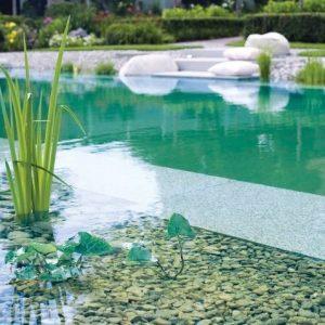 Biopiscina-piscina natural