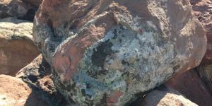 rocas jardin, roca jardin japones, roca musgo